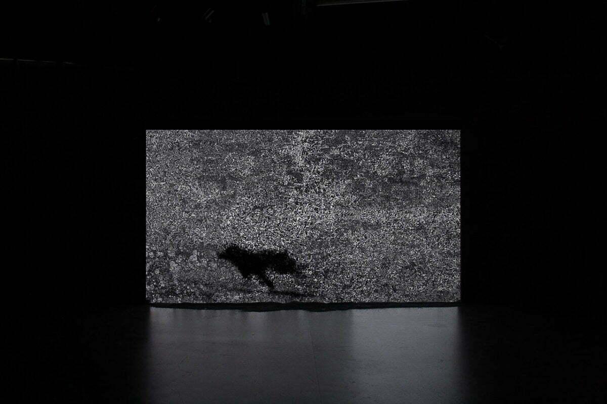 F.L.I.R. - Film (2014) - Jérôme Cognet - Grand Trouble Halle Saint-Pierre 2017