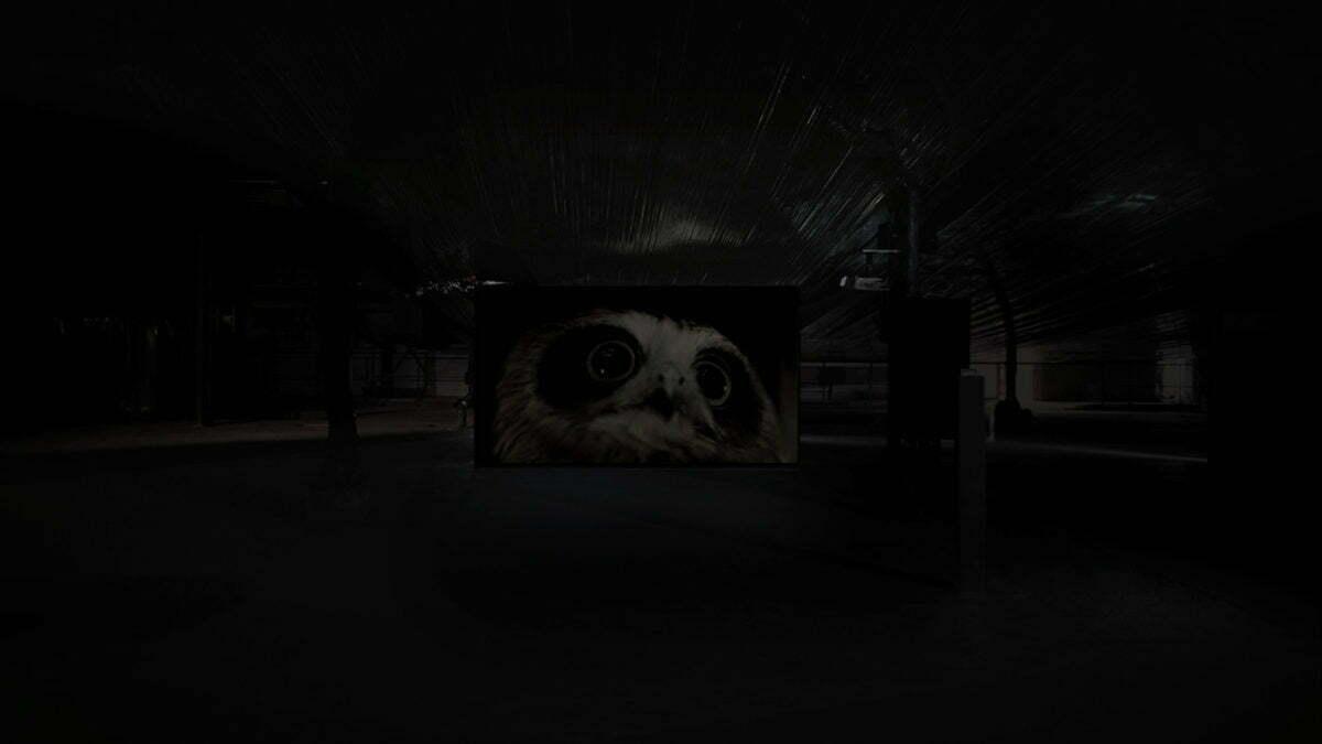 jerome-cognet-nuits-noires-2019-exposition-03